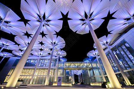 园艺博览会国际馆灯光图片