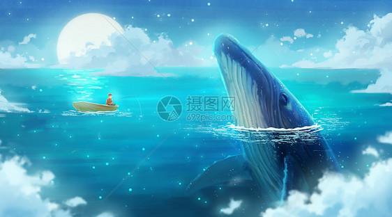与鲸鱼的邂逅图片