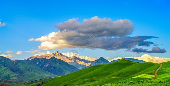 美丽草原的夏季风景图片