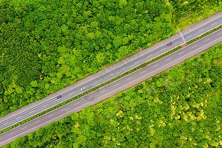 航拍树木环绕的高速公路图片