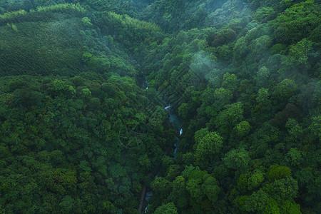 桂林森林航拍图片