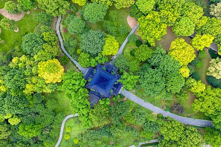 航拍城市公园绿化图片