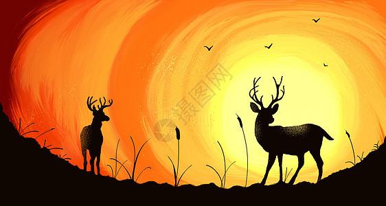 暖色夕阳下的两只麋鹿的剪影图片