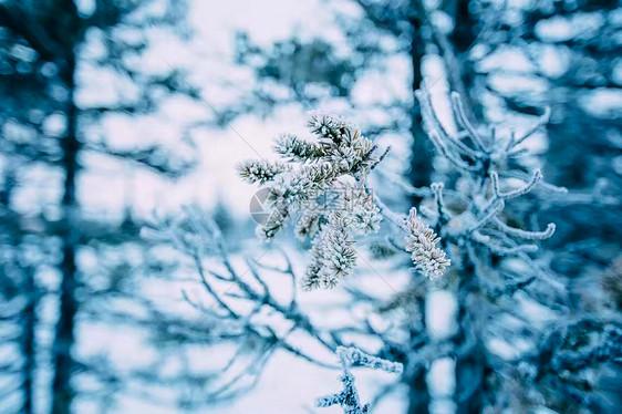 贝加尔湖冰霜图片