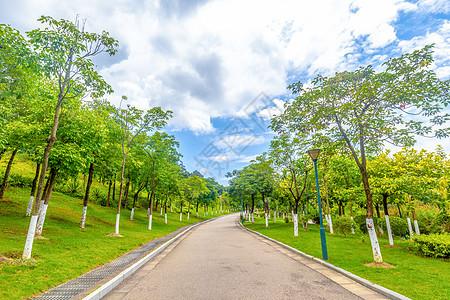 园林道路图片