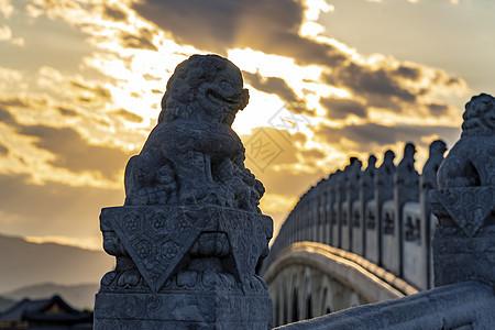 颐和园十七孔桥的石狮图片