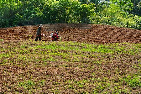 犁地耕作图片