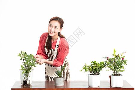 美女种植盆栽图片
