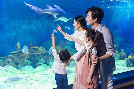一家四口参观海洋馆图片