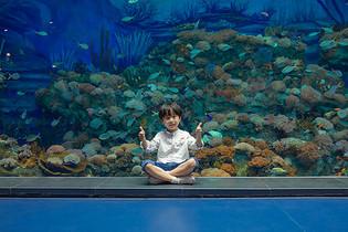 小男孩参观海洋馆图片
