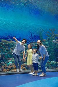 年轻家庭参观海洋馆图片