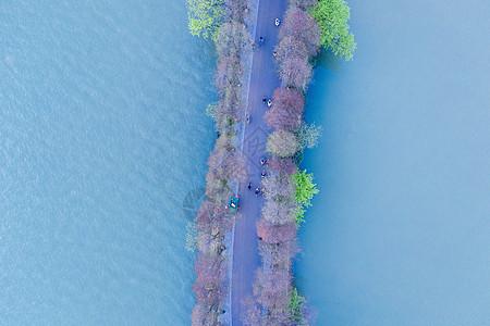 江西九江庐山西海步行绿道图片