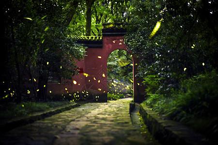 南京灵谷寺夏季萤火虫图片