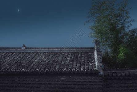 月色夜竹图片
