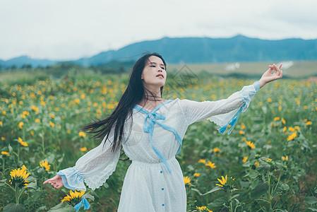 随风起舞的向日葵少女图片