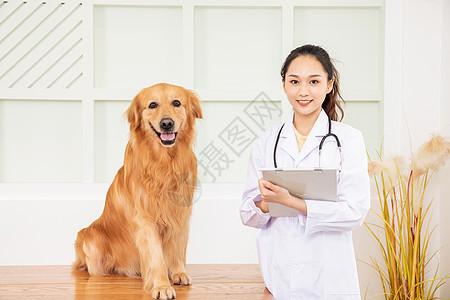 宠物医生给宠物狗做检查图片