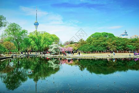 春天北京玉渊潭公园图片