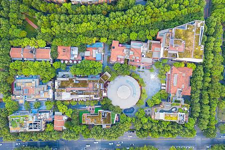 航拍绿荫环绕的街景商业中心图片