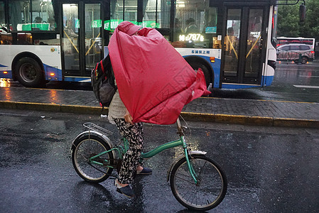2019年8月9日,上海市民台风天气骑车出行【媒体用图】图片