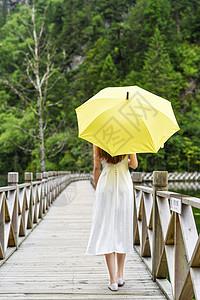 美女户外撑伞打伞背影图片