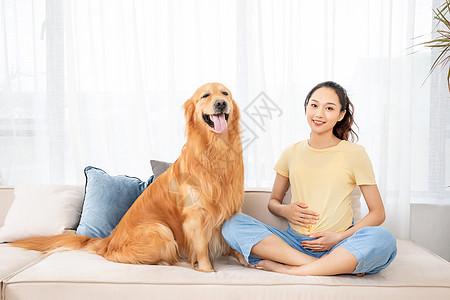 怀孕的美女和宠物金毛犬图片