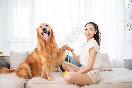 美女和金毛犬握手图片