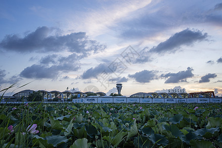青岛机场图片