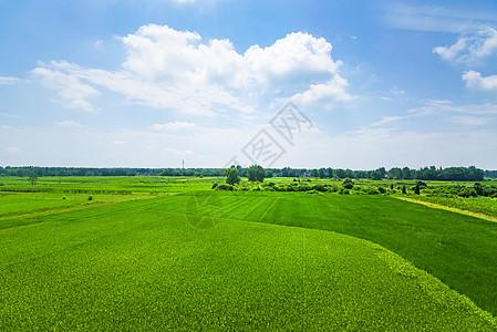 农田全景风光图片