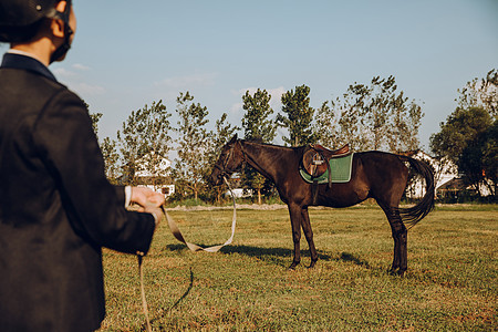 年轻女子户外牵马图片