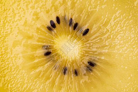 新鲜黄心猕猴桃图片