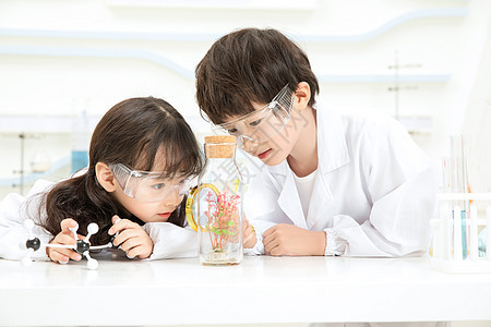 小小科学家做实验图片