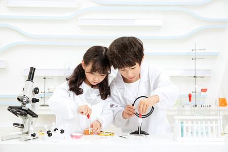 小小科学家观察实验图片