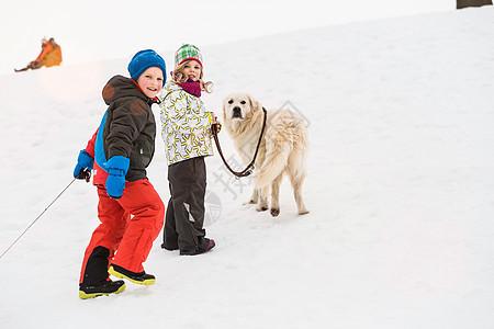 男孩和女孩在雪地里遛狗图片