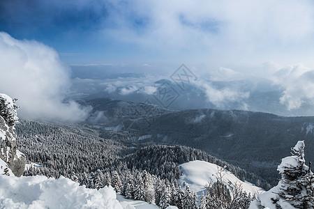 德国拜仁冷格里斯冰雪覆盖的山丘和森林俯视图图片