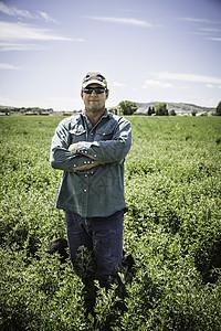 美国蒙大拿州比林斯田野里的成熟男人图片