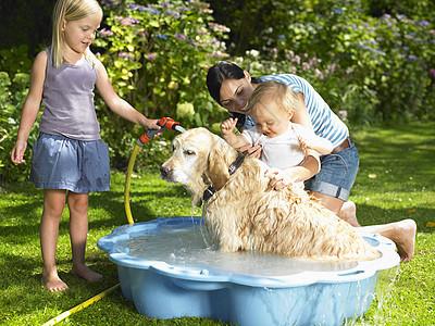母亲女儿和儿子给狗洗澡图片