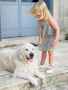 女孩在给狗刷毛图片