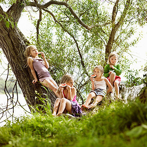 姑娘们在湖边的树上吃西瓜图片