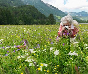 女人在花丛里拍照图片