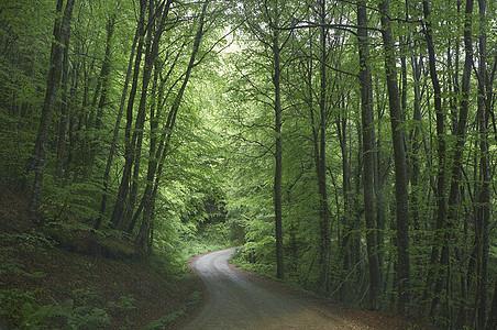 空旷乡村道路图片