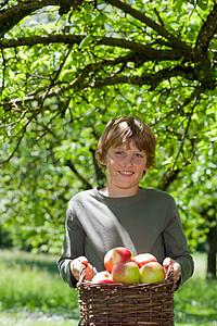 提苹果篮的男孩图片