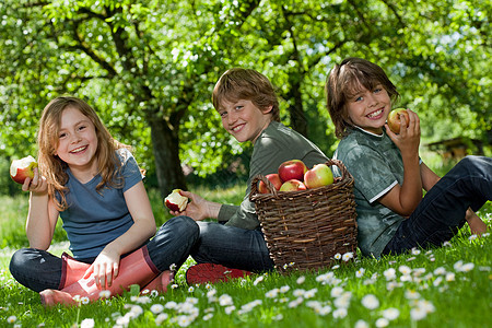 孩子们在草地上吃苹果图片