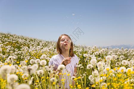在草地上吹蒲公英种子的女孩图片