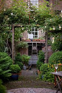 英国花园图片