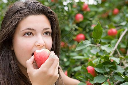 吃红苹果图片