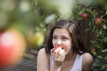 果园吃苹果图片