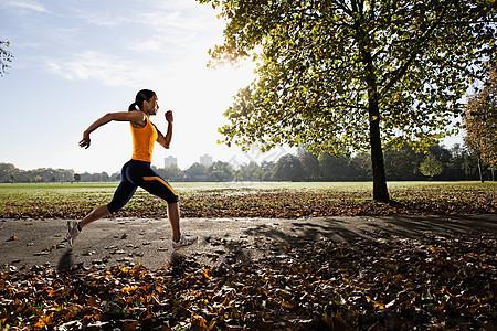 在公园里跑步图片