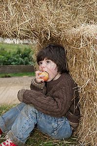 干草包里的小男孩图片