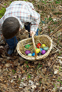 男孩收集复活节彩蛋图片