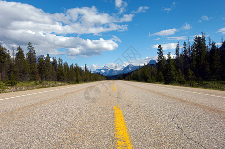 通往落基山脉的冰原公园公路图片